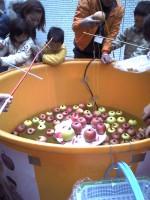 リンゴ釣り
