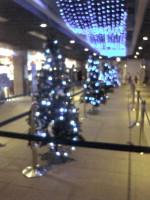 アクアワールドのクリスマスツリー