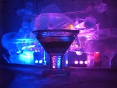 アイスミュージアム 氷のマティーニグラス