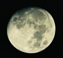 満月近い月