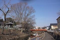 海潮寺沿いの行屋川
