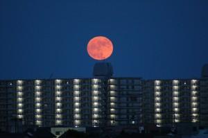 東の空から昇りくる満月
