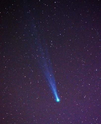 11月16日に房総半島の鴨川で天体望遠鏡を使い撮影されたアイソン彗星(撮影:首藤謙一)