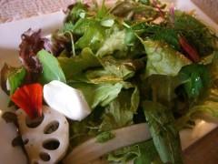 シモタ農園の季節のサラダ