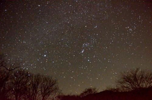 冬空に輝く星々