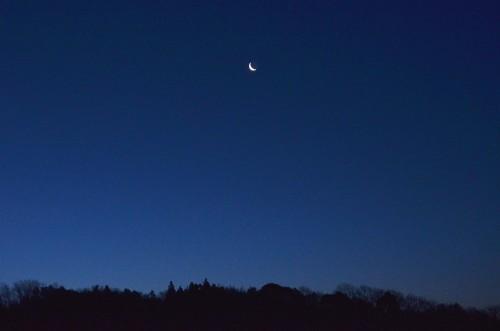 明け方の細い月