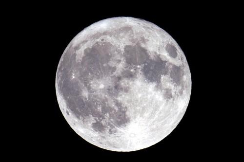 満月を見るととても明るい丸い輝きですが、天体望遠鏡を使って撮影すると海と呼ばれる黒い部分が鮮明に写ります。肉眼でも視力の良い方は太古の昔から黒い模様の部分を見て「うさぎがお餅をついている姿」とか「片方のハサミがとれたかに」などとそのパターンを見ていました。ところで、今回の中秋の名月は欧米では皆既月食となり、月食の月として見ることができますが、日本では残念ながら月食にはなりません。(撮影:浦辺守)