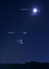 151105東天の月惑星4時19分撮影(名入色)l