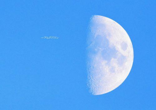 今年の2月16日のアルデバラン食では、夜が暗くなる前に潜入が見られました。 この写真は、潜入前のアルデバランと月の姿です。