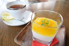 レアチーズケーキ オレンジソース