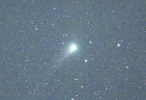 ジョンソン彗星(5月20日撮影)